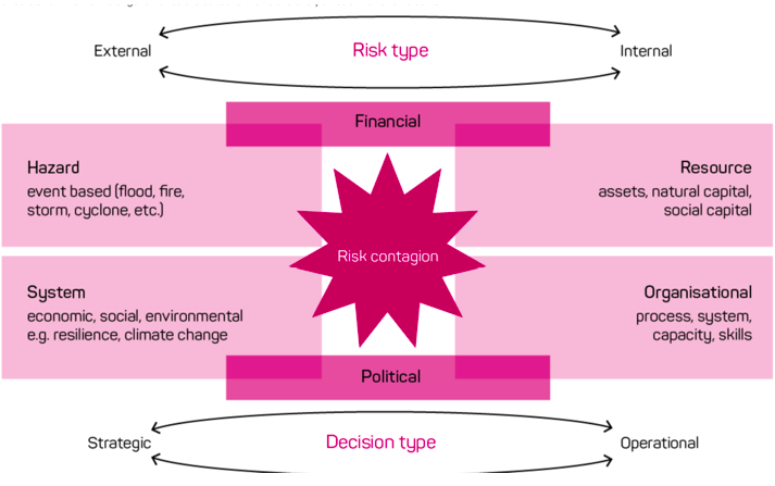 Diagram of risk system with internal and external components.