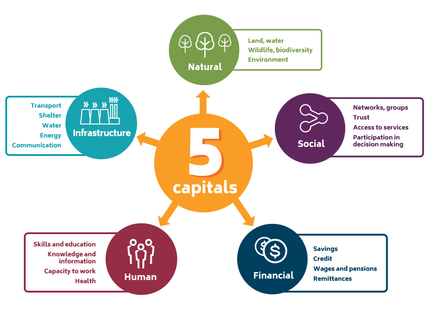 Showing Five Capitals which often used to determine adaptive capacity of individuals