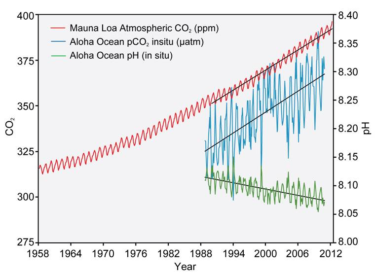 Atmospheric CO2 concentrations and ocean pH values.