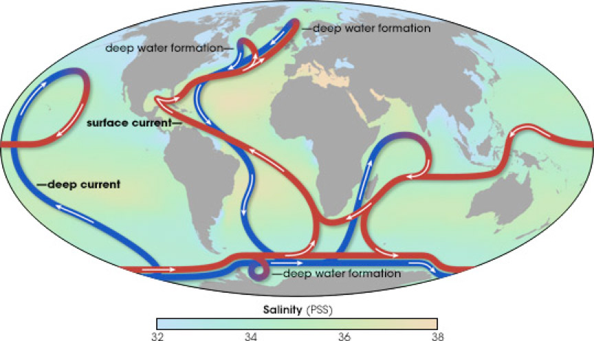 The large-scale circulation of the oceans, known as the thermohaline circulation.