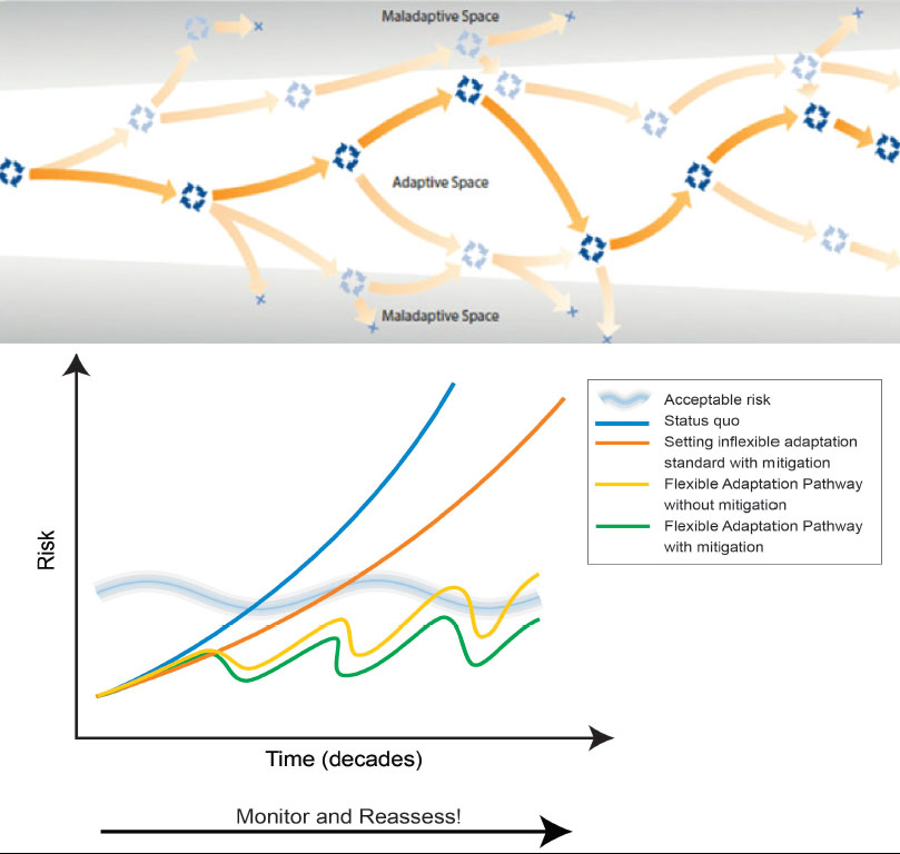 Models of the adaptation pathways approach