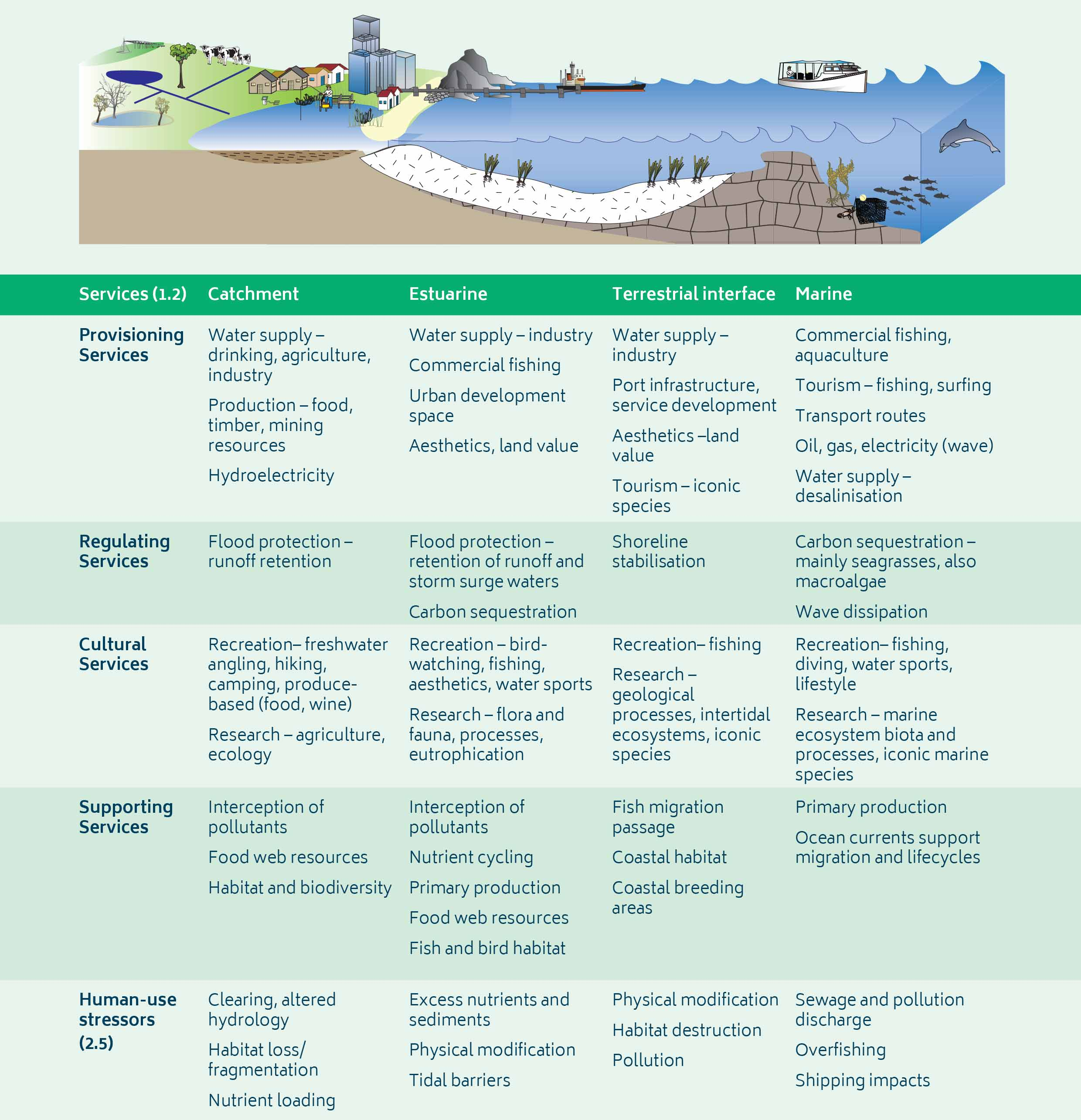 Understanding the functions, processes and services provided by or in your system of interest helps when determining climate change impacts and appropriate responses to them.